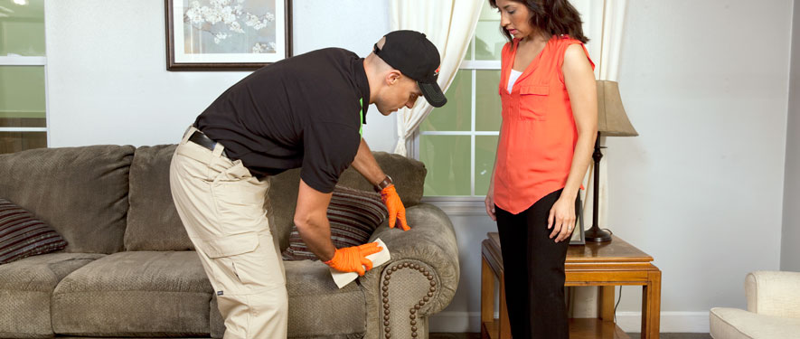 Bala Cynwyd, PA carpet upholstery cleaning